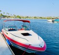 21 ft. Sea Ray Boats 21 Seville Cuddy Cruiser Boat Rental San Diego Image 5