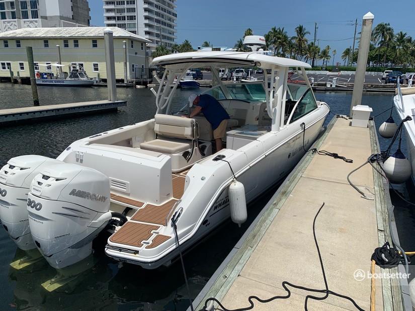 Rent a Boston Whaler cruiser in Nokomis, FL near me
