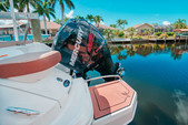 24 ft. SEA RAY BOATS 240 SUNDECK Performance Boat Rental Fort Myers Image 8