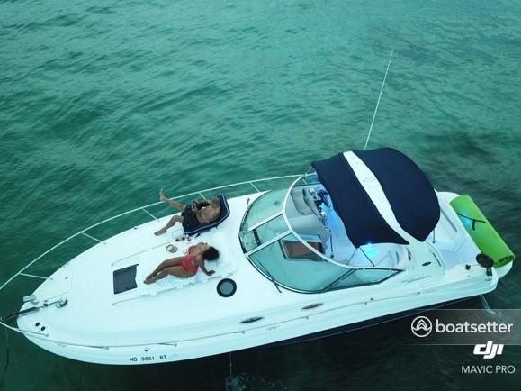 Rent a Sea Ray Boats cruiser in Hallandale Beach, FL near me