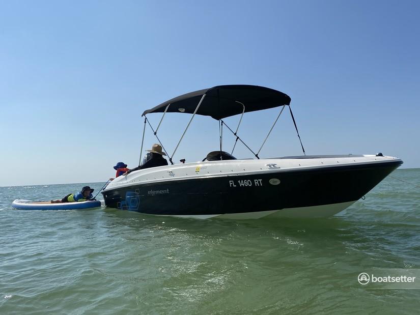 Rent a BAYLINER deck boat in Tampa, FL near me