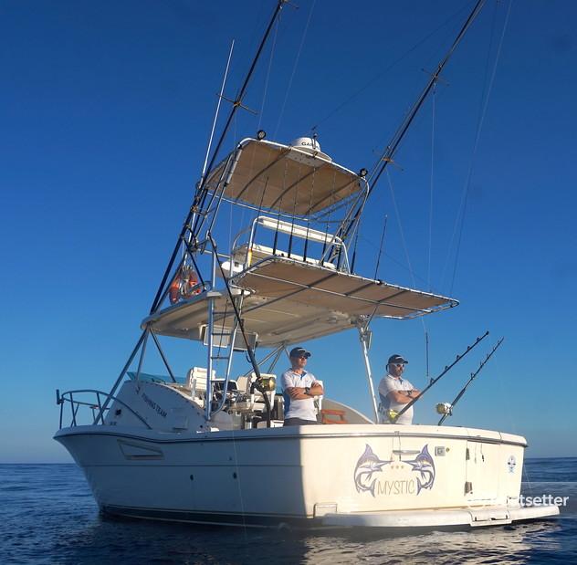 Rent a Pursuit offshore sport_fishing in Port de Pollença, PM near me