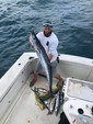 35 ft. Bertram Yacht 35 Sportfish Saltwater Fishing Boat Rental Miami Image 8