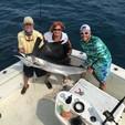 35 ft. Bertram Yacht 35 Sportfish Saltwater Fishing Boat Rental Miami Image 12