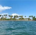 25 ft. Dusky 233 Center Console Boat Rental Miami Image 15