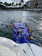 53 ft. Sea Ray Boats 500 Sundancer Express Cruiser Boat Rental West Palm Beach  Image 31