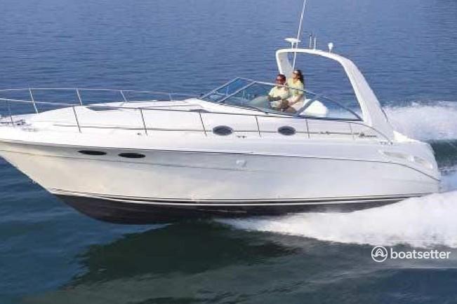Rent a Sea Ray Boats cruiser in Orange Beach, AL near me