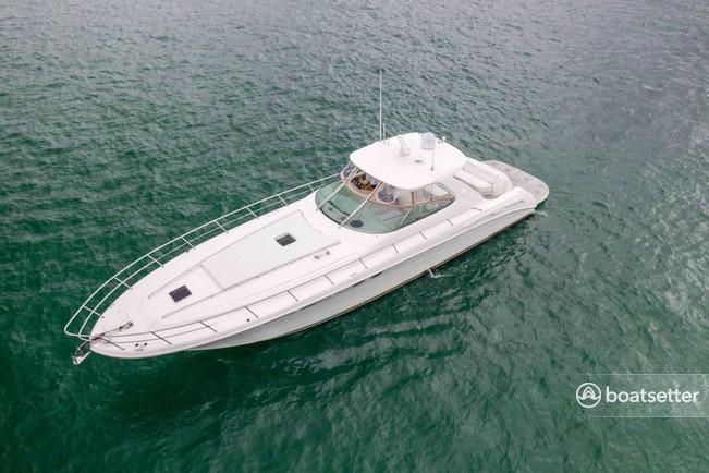 Rent a Sea Ray Boats express cruiser in Montauk, NY near me