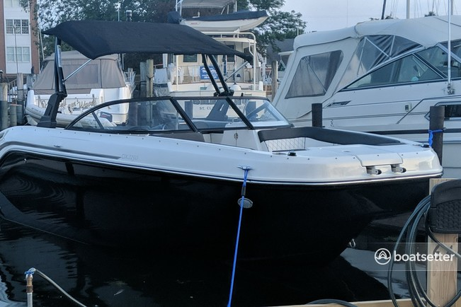 Rent a Bayliner deck boat in St. Clair Shores, MI near me
