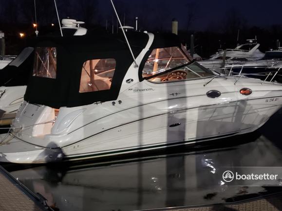 Rent a Sea Ray Boats motor yacht in Alexandria, VA near me