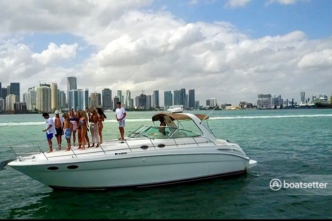 Rent a Sea Ray Boats cruiser in Miami, FL near me