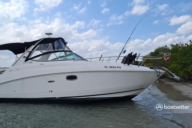 Rent a Sea Ray Boats express cruiser in Miami, FL near me