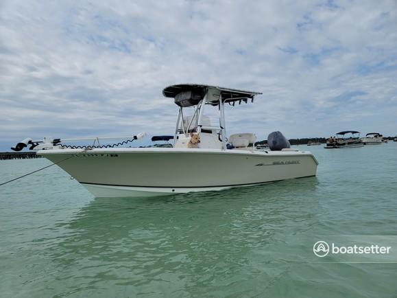 Rent a Sea Hunt Boats center console in Destin, FL near me