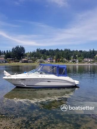 Rent a Sea Ray Boats cuddy cabin in Fox Island, WA near me