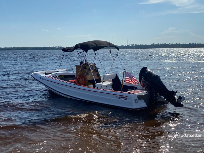 Rent a Boston Whaler center console in Wilmington, NC near me