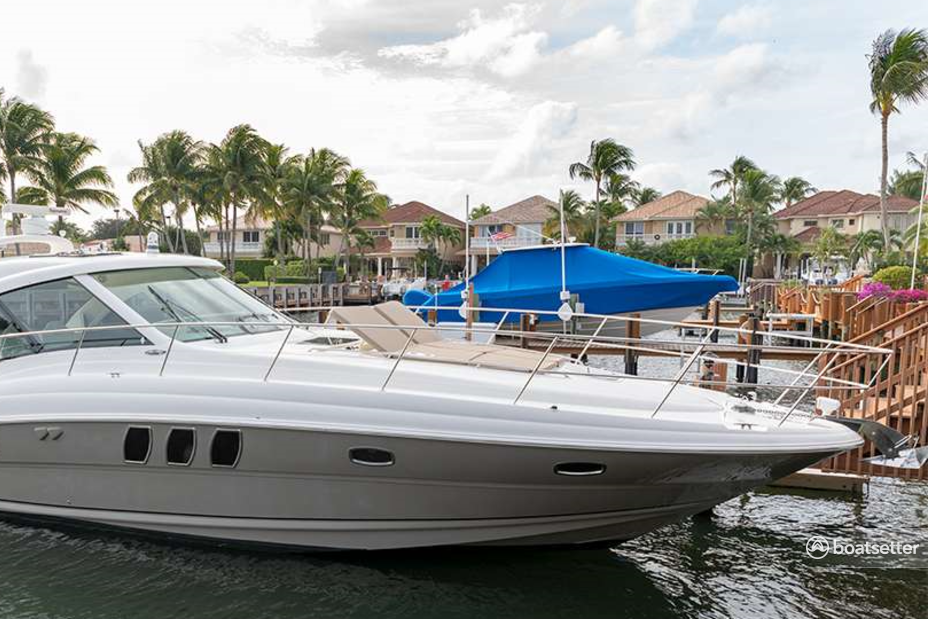 Rent a Sea Ray Boats express cruiser in West Palm Beach, FL near me
