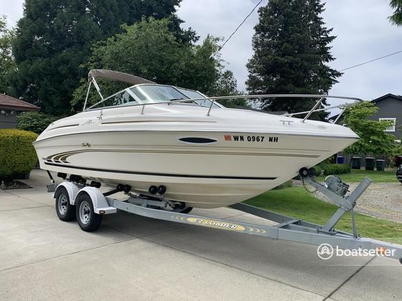 Rent a Sea Ray Boats express cruiser in Seattle, WA near me