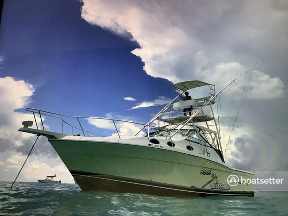 Rent a Wellcraft motor yacht in Key Largo, FL near me