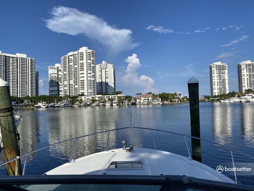 Rent a Sea Ray Boats cruiser in North Miami Beach, FL near me