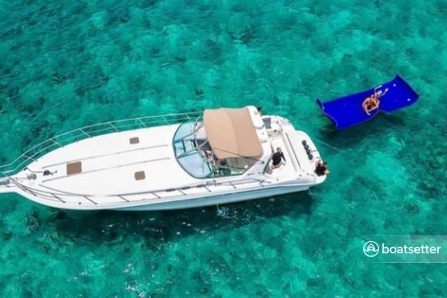 Rent a Sea Ray Boats  in Aventura, FL near me