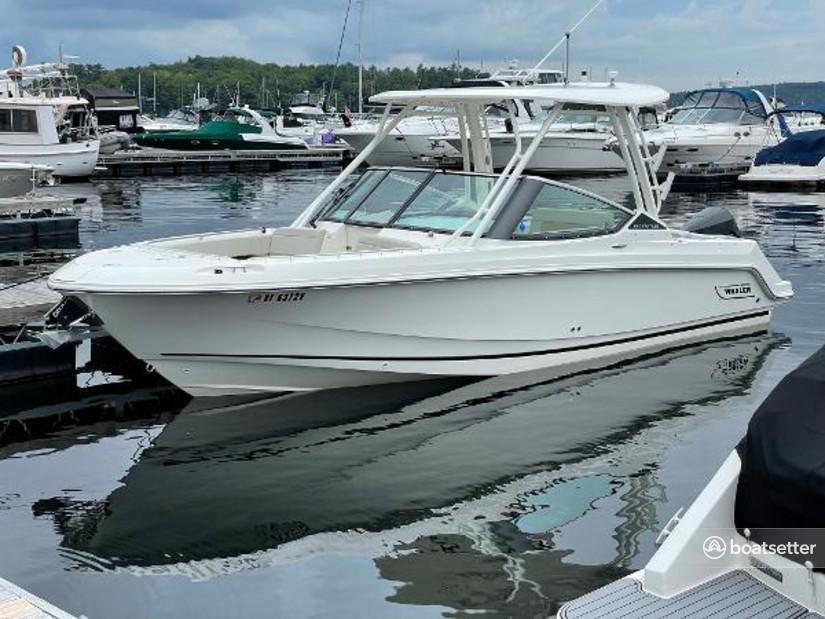 Rent a BOSTON WHALER cruiser in Seattle, WA near me